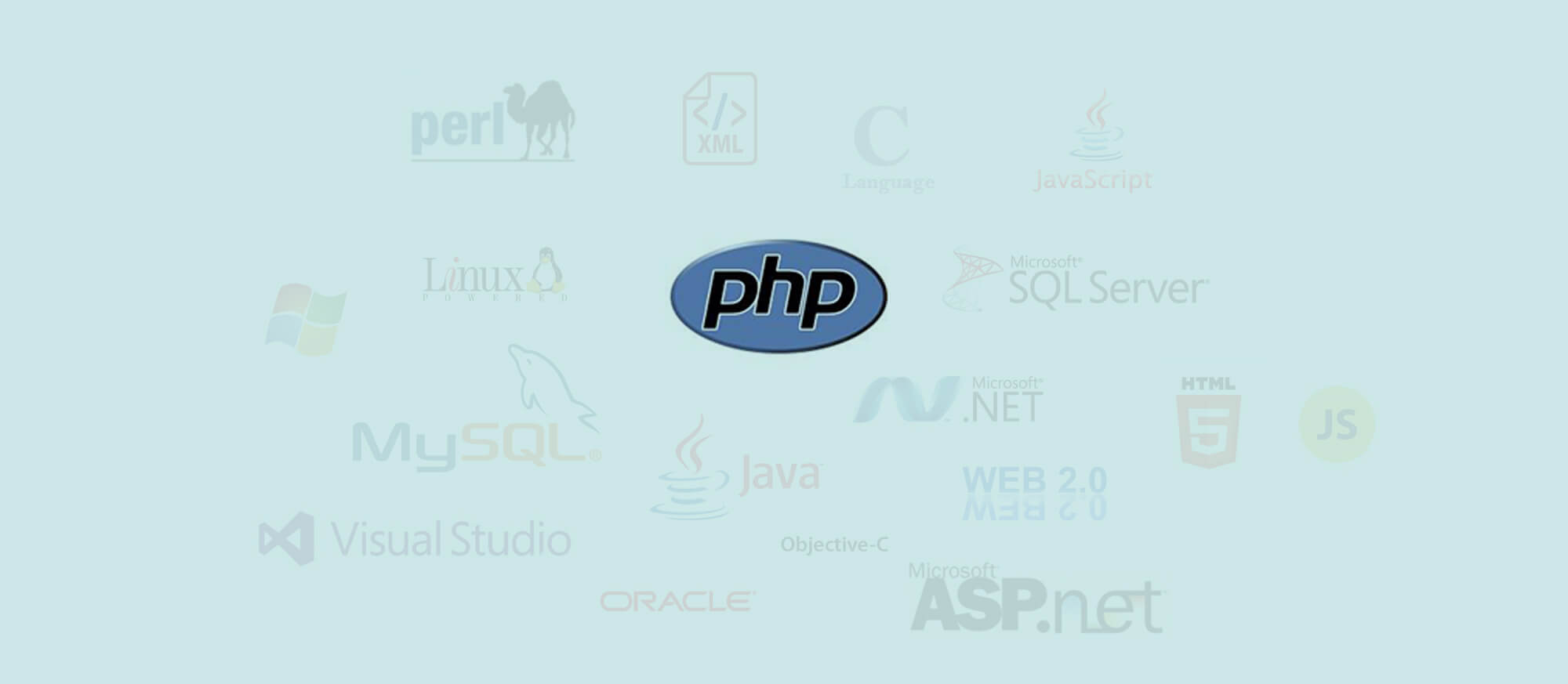 SunNet Solutions is proficient in multiple computer programming languages such as php.